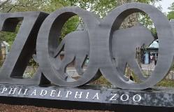 Phill Zoo logo